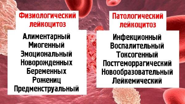 Анализ крови цис что это значит thumbnail