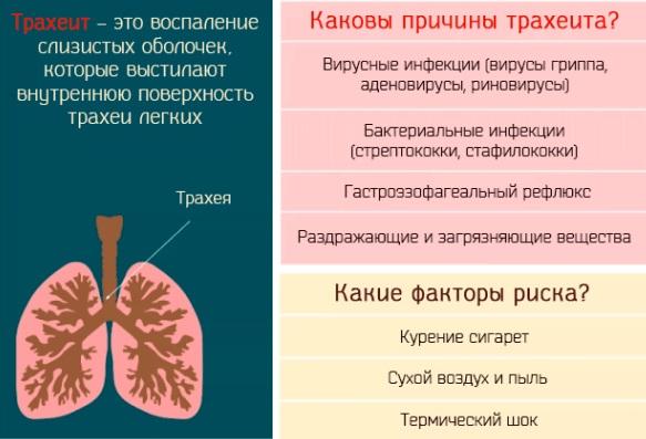 Как облегчить кашель у ребенка ночью при простуде, аллергии, прорезывании зубов