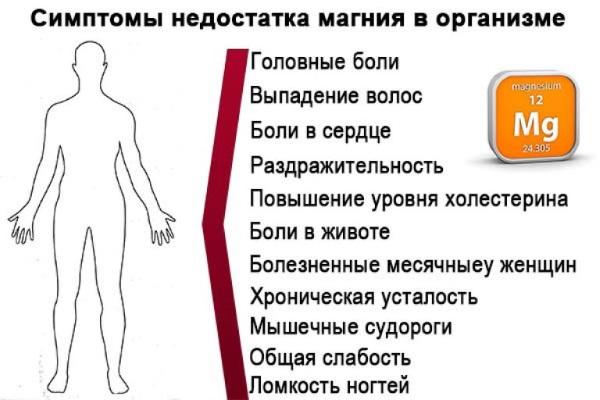 Как принимать магний B6 в таблетках для профилактики. До еды или после для лучшего эффекта. Лучшие комплексы