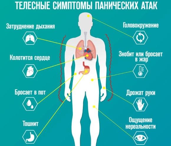 Атаракс. Инструкция по применению, побочные действия, отзывы врачей и пациентов