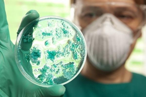 Бактериальная инфекция у детей. Симптомы, лечение желудочной, кишечной