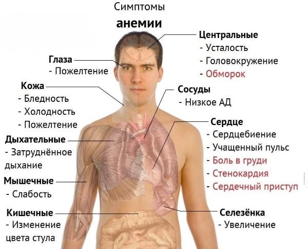 Бледность лица. Причины у женщины при климаксе, беременности, онкологии, после родов, операции. Лечение