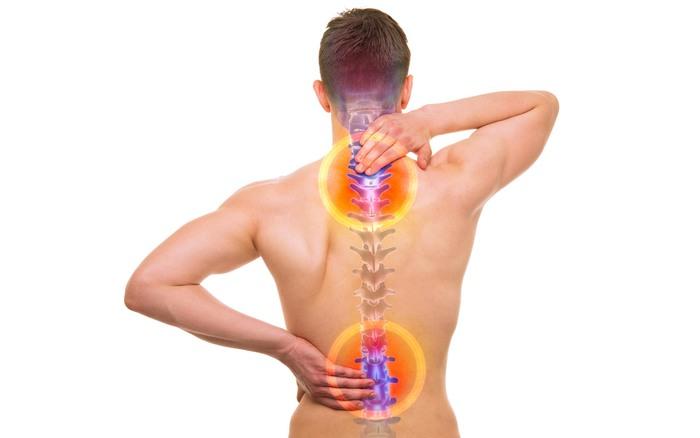 Трапециевидная мышца спины. Функции, где находится, что делать если болит, спазм, упражнения