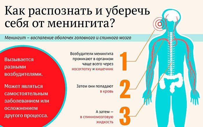 Болезни уха у взрослых. Симптомы и лечение народными средствами, капли, процедуры