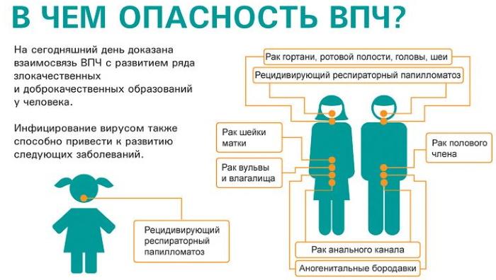 Прививка от папилломавируса (ВПЧ). До какого возраста женщинам, девочкам, мужчинам, мальчикам, как делается