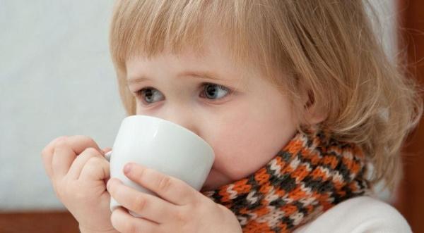 Ройбос чай. Полезные свойства, рецепты, от чего и как принимать, противопоказания