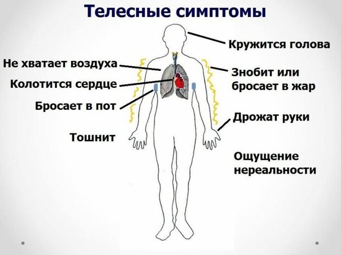 Вегето-сосудистая дистония. Симптомы, лечение, обострение у взрослых