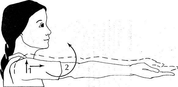 Воспаление плечевого сустава. Симптомы и лечение народными средствами, медикаментами