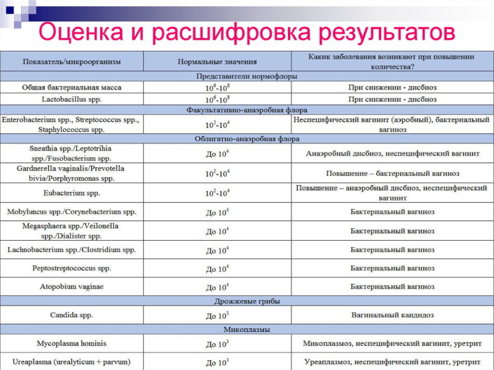 Eubacterium spp в мазке у женщин, мужчин (эубактерии). Норма, характеристики, лечение