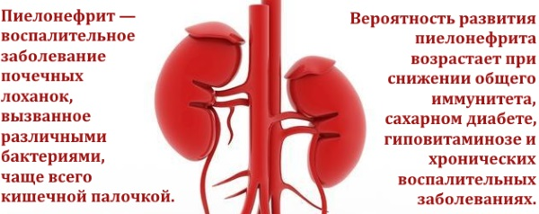 Хронический пиелонефрит у женщин. Симптомы и лечение народными средствами, препараты, диета