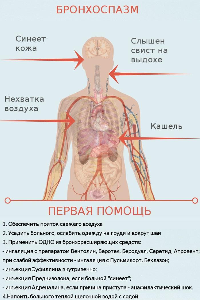 Повышенный иммуноглобулин е лечение народными средствами thumbnail