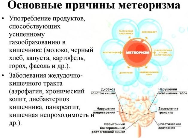 Проктонис капсулы. Инструкция по применению, цена, аналоги, отзывы