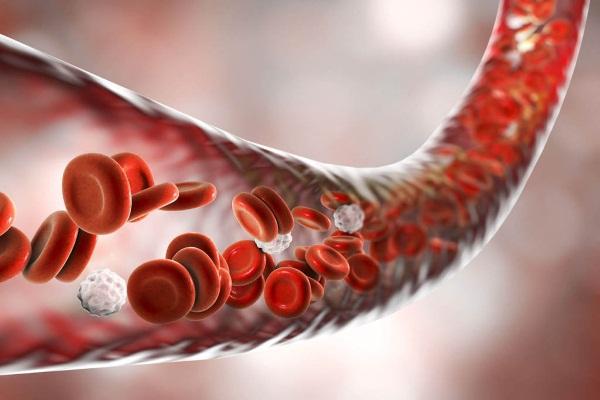 Препараты для разжижения крови после 40-50-60 лет, последнего поколения