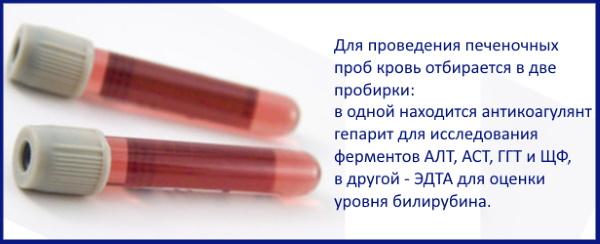 Анализ крови, слюны для похудения: на пищевую непереносимость, гормоны, нутригенетический