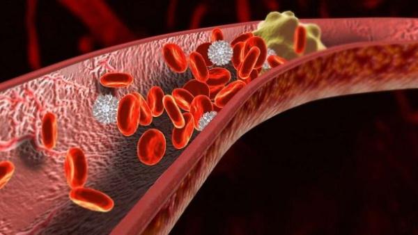 Брадикардия сердца у взрослых. Что это такое, причины, симптомы, лечение. Препараты