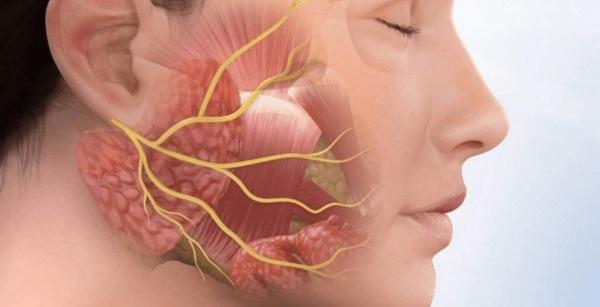 Лекарство от воспаления лицевого нерва