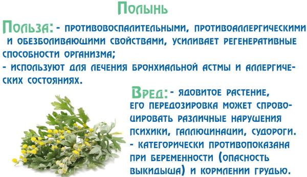Таблетки для улучшения пищеварения. Лекарства, травы, народные средства, диета