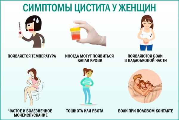 Лучшие препараты от цистита у женщин быстрого действия, за 1 день. Список