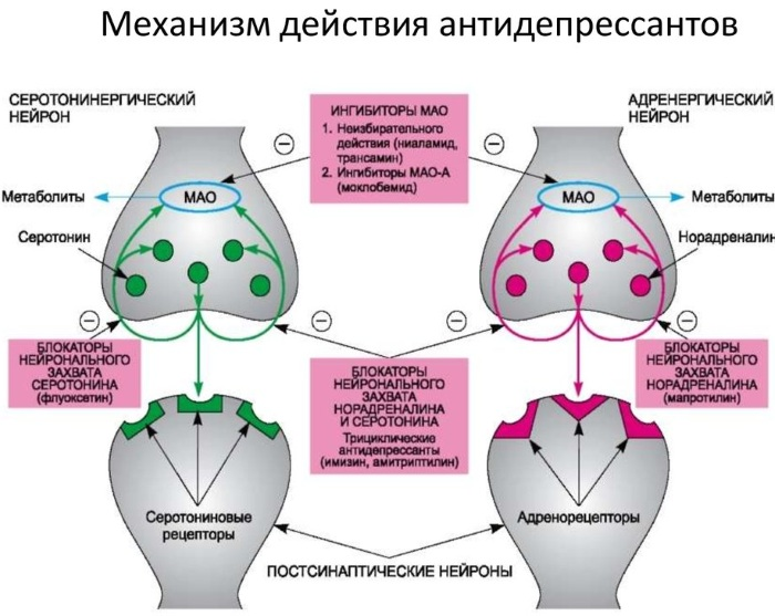 Амитриптилин. Инструкция применения антидепрессанта, отзывы пациентов, побочные эффекты, цена