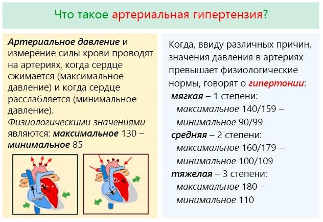 Настойка боярышника. Инструкция по применению, свойства, противопоказания, рецепт, цена
