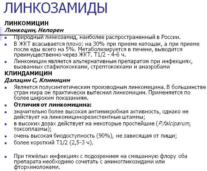 Группы антибиотиков. Классификация препаратов, свойства, описание. Таблица