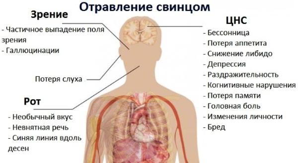 Красная моча у женщины. Причины боли, после 40-50 лет, с осадком, сгустки, при беременности