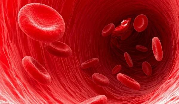 Лекарство для разжижения крови, укрепления стенок сосудов. Список нового поколения