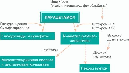 Панадол (Panadol) сироп. Дозировка для детей, инструкция, цена