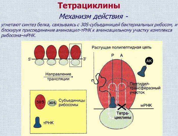 Доксициклин (Doxycycline) при укусе клеща. Инструкция по применению, аналоги, показания к применению, как принимать