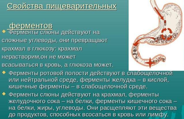 Сладкий привкус во рту. Причины у женщин, мужчин после сна, еды, алкоголя, рвоты, курения, лечение