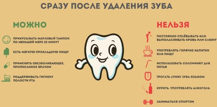 Альвеолы во рту. Где находятся, что это такое, фото, строение