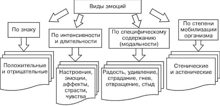 Эмоции в психологии. Классификация, что это такое, виды, функции, характеристика, как управлять, сдерживать