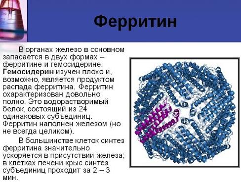 Феррум Лек (Ferrum Lek) таблетки. Отзывы, инструкция по применению, аналоги, цена