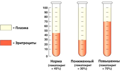 Гематокрит. Норма у женщин по возрасту, таблица, что это такое, ниже, выше нормы
