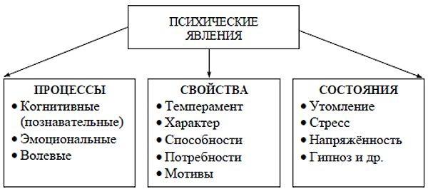 Психика в психологии. Что это, понятие, определение, структура, функции, расстройства, свойства, болезни