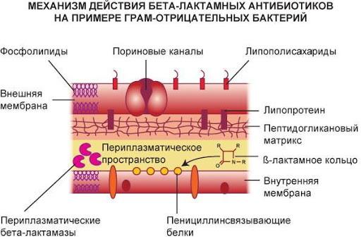 Супракс Солютаб (Suprax Solutab) 400 мг таблетки. Цена, инструкция по применению, аналоги