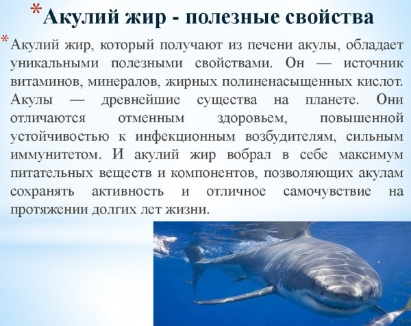 Акулий жир в капсулах из Китая. Инструкция по применению, где купить, противопоказания, как принимать, цена