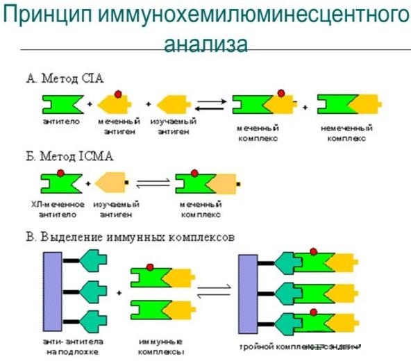 CA 15-3 онкомаркер. Норма у женщин, таблица, что это такое, расшифровка