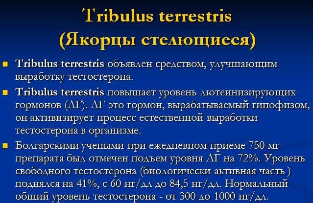 Эффекс Трибулус Эвалар. Отзывы, цена, инструкция по применению, противопоказания