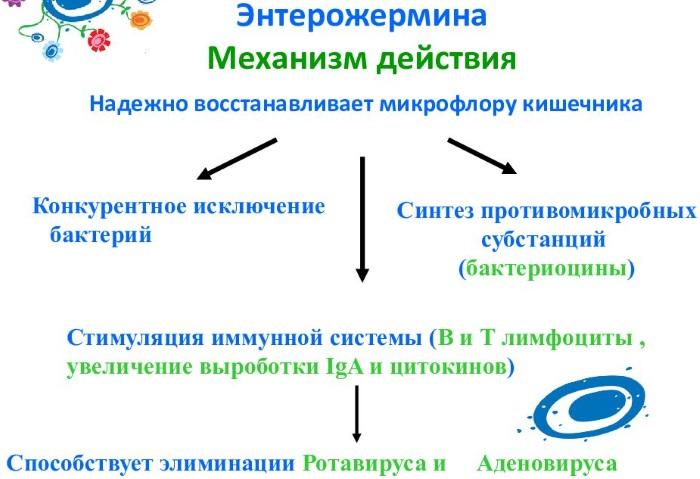 Ентерожермина (Enterogermina) для детей. Отзывы, инструкция по применению, для чего назначают, цена
