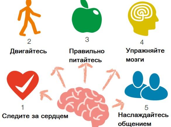 Когнитивные нарушения. Что это такое у пожилых людей, детей, взрослых, лечение, препараты при сосудистых заболеваниях, инсульте, депрессии