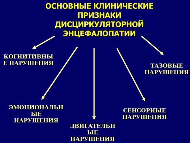 Резидуальная энцефалопатия головного мозга. Что это такое, симптомы, как лечить, последствия