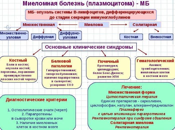 Миеломная болезнь (множественная миелома). Что это у взрослых, детей, рекомендации, лечение, диагностика, прогноз
