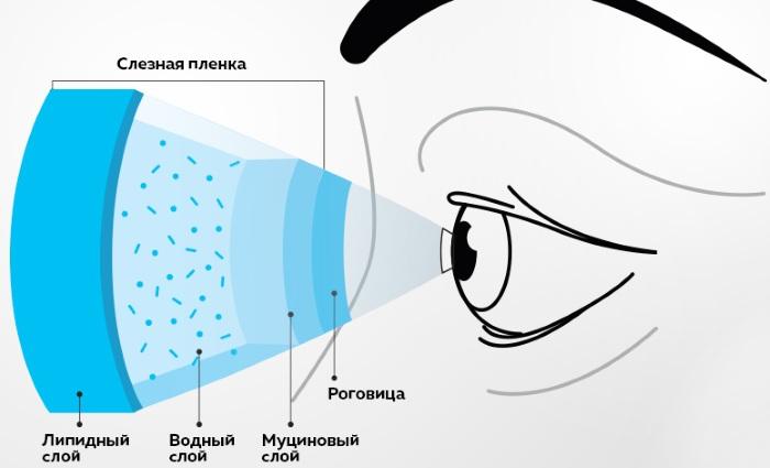 Натуральная слеза глазные капли. Инструкция по применению, цена, аналоги
