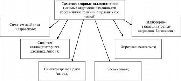 Галлюцинации в психологии, психиатрии. Что это такое, картинки, определение, классификация, симптомы