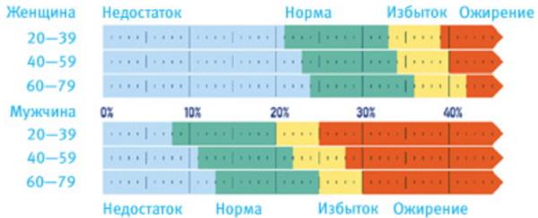 Анализ состава тела. Что это такое, как делают, цена, таблица норм, расшифровка