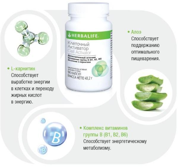 Клеточный активатор Herbalife (Гербалайф). Отзывы похудевших, инструкция, цена
