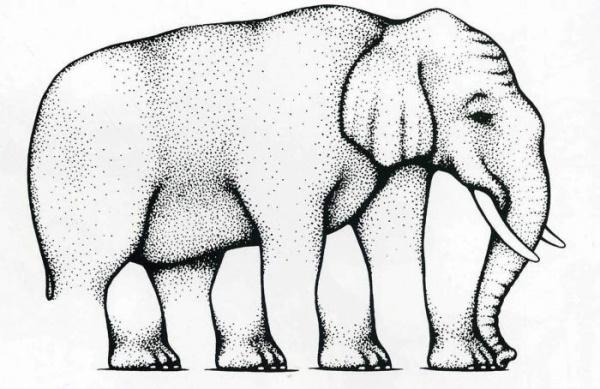 Иллюзия в психологии. Что это такое, определение, примеры