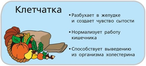 Клетчатка. Список продуктов для похудения, пищеварения, от запоров. Таблица