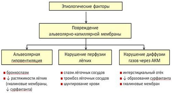 Респираторный дистресс-синдром (РДС) у взрослых, новорожденных, этиология, патогенез, клинические рекомендации